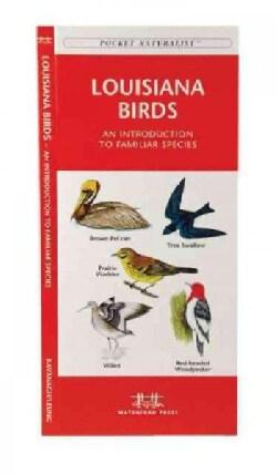 Louisana Birds: A Folding Pocket Guide to Familiar Species (Paperback)