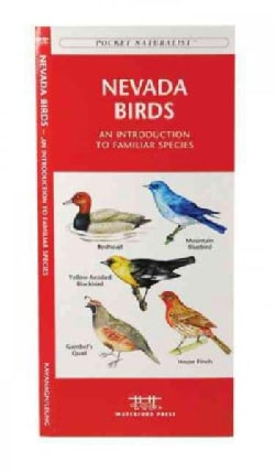Nevada Birds: A Folding Pocket Guide to Familiar Species (Paperback)