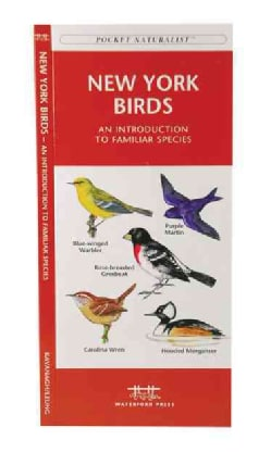 New York Birds: A Folding Pocket Guide to Familiar Species (Paperback)