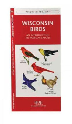 Wisconsin Birds: A Folding Pocket Guide to Familiar Species (Paperback)