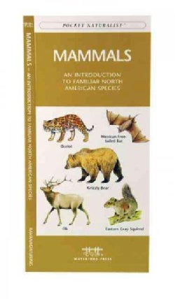 Mammals: A Folding Pocket Guide to Familiar North American Species (Paperback)