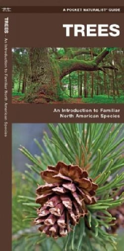 Trees: A Folding Pocket Guide to Familiar North American Species (Paperback)