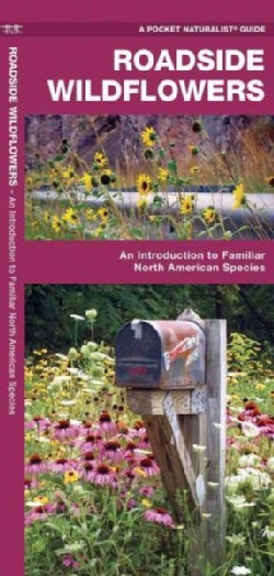 Roadside Wildflowers: A Folding Pocket Guide to Familiar North American Species (Paperback)