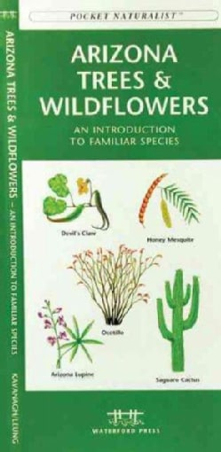 Arizona Trees & Wildflowers: A Folding Pocket Guide to Familiar Species (Paperback)