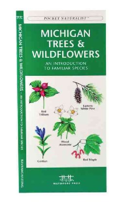 Michigan Trees & Wildflowers: An Introduction To Familiar Species (Wallchart)