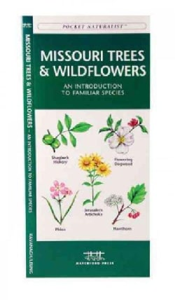 Missouri Trees & Wildflowers: A Folding Pocket Guide to Familiar Species (Paperback)