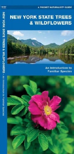 New York State Trees & Wildflowers: An Introduction To Familiar Species (Wallchart)