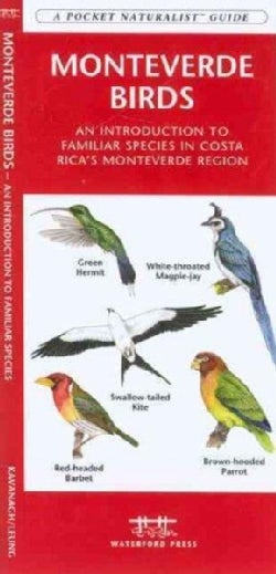 Monteverde Birds: An Introduction to Familiar Species in Costa Rica's Monteverde Region (Paperback)