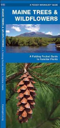 Maine Trees & Wildflowers (Paperback)