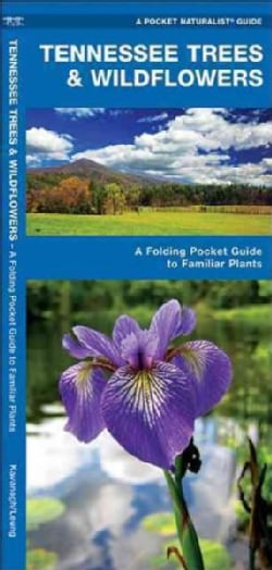 Tennessee Trees & Wildflowers: An Introduction to Familiar Species (Wallchart)