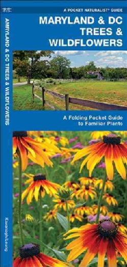 Maryland & DC Trees & Wildflowers: An Introduction to Familiar Species (Paperback)