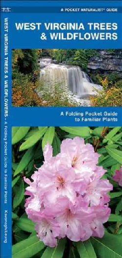 West Virginia Trees & Wildflowers (Paperback)