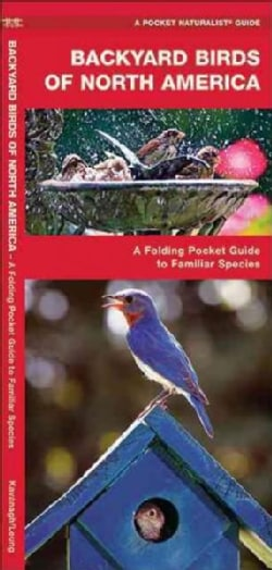 Backyard Birds of North America: A Folding Pocket Guide to Familiar Species (Paperback)