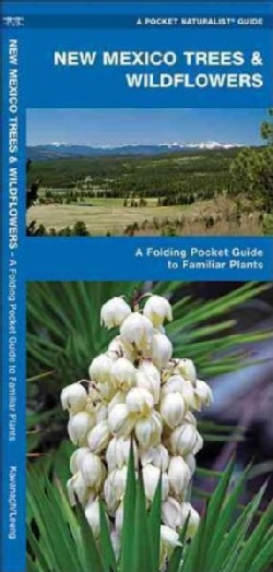 New Mexico Trees & Wildflowers: An Introduction to Familiar Species (Wallchart)