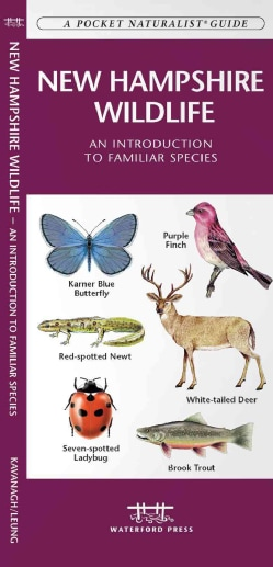 New Hampshire Wildlife: An Introduction to Familiar Species (Wallchart)