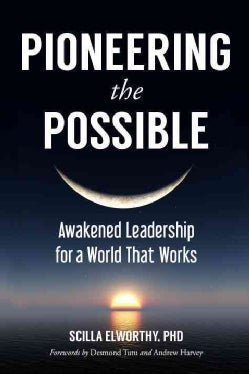 Pioneering the Possible: Awakened Leadership for a World That Works (Paperback)