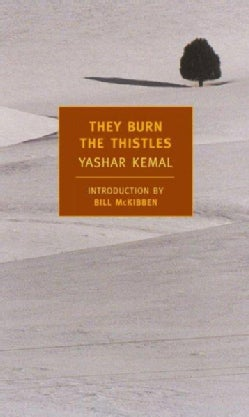 They Burn the Thistles (Paperback)