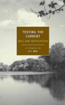 Testing the Current (Paperback)
