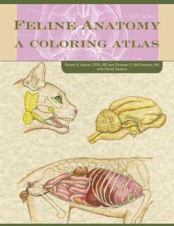 Feline Anatomy: A Coloring Atlas (Paperback)