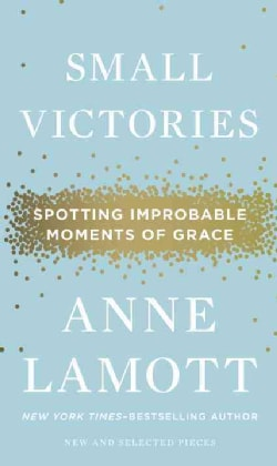 Small Victories: Spotting Improbable Moments of Grace (Hardcover)