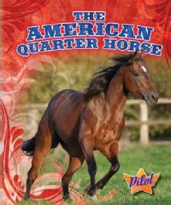 The American Quarter Horse (Hardcover)