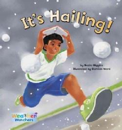 It's Hailing! (Hardcover)