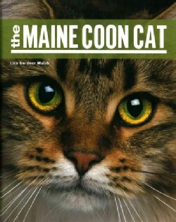 The Maine Coon Cat (Paperback)