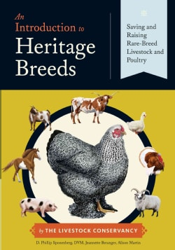 An Introduction to Heritage Breeds: Saving and Raising Rare-Breed Livestock and Poultry (Paperback)