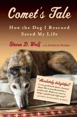 Comet's Tale: How the Dog I Rescued Saved My Life (Paperback)