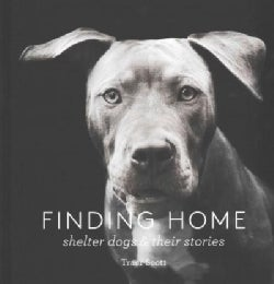 Finding Home: Shelter Dogs & Their Stories (Hardcover)