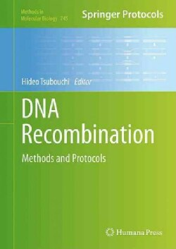 DNA Recombination: Methods and Protocols (Hardcover)