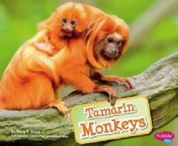 Tamarin Monkeys (Hardcover)
