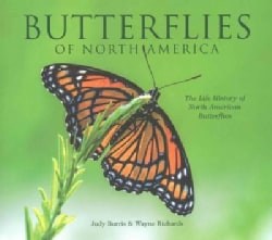 Butterflies of North America: The Life History of North American Butterflies (Hardcover)