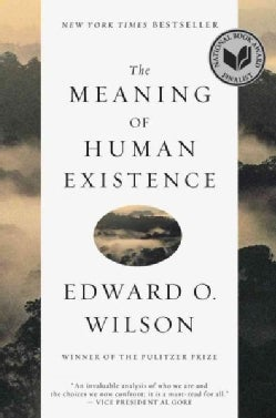 The Meaning of Human Existence (Paperback)