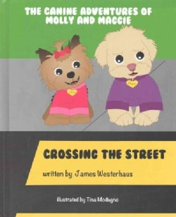 Crossing the Street (Hardcover)