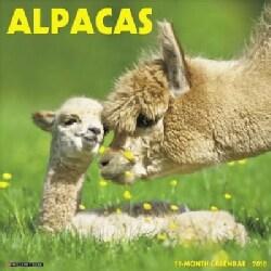 Alpacas 2018 Calendar (Calendar)