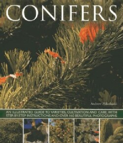 Conifers: An Illustrated Guide to Varieties, Cultivation and Care, With Step-by-step Instructions and over 160 Be... (Paperback)