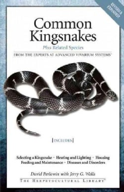 Common Kingsnakes: Plus Related Species (Paperback)