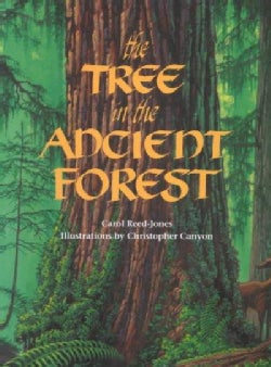 The Tree in the Ancient Forest (Paperback)