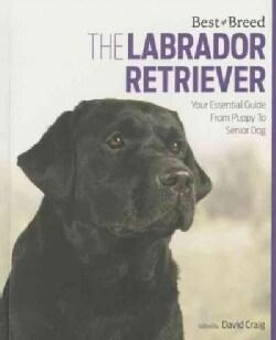 The Labrador Retriever: Your Essential Guide from Puppy to Senior Dog (Paperback)