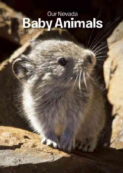 Our Nevada / De Nevada: Baby Animals / Animales bebes (Board book)