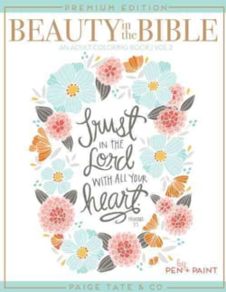 Beauty in the Bible: Adult Coloring Book (Paperback)
