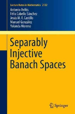 Separably Injective Banach Spaces (Paperback)
