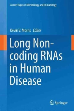 Long Non-coding Rnas in Human Disease (Hardcover)