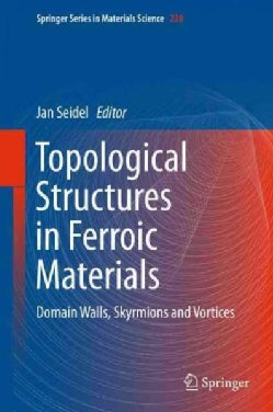 Topological Structures in Ferroic Materials: Domain Walls, Vortices and Skyrmions (Hardcover)