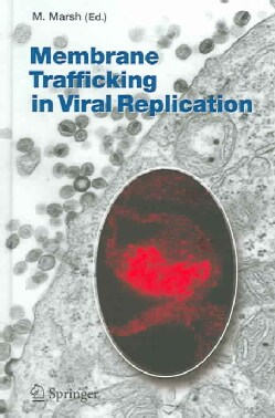 Membrane Trafficking In Viral Replication (Hardcover)