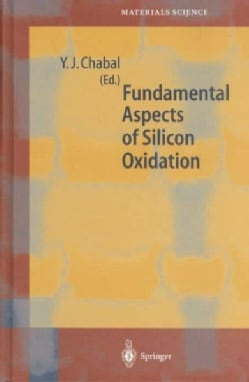 Fundamental Aspects of Silicon Oxidation (Hardcover)