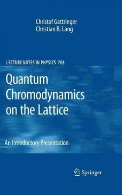 Quantum Chromodynamics on the Lattice: An Introductory Presentation (Hardcover)