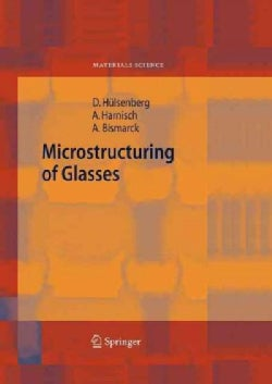 Microstructuring of Glasses (Paperback)