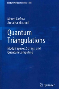 Quantum Triangulations: Moduli Spaces, Strings, and Quantum Computing (Paperback)